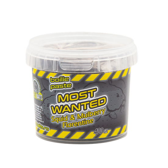 Secret Baits Most Wanted Boilie Paste