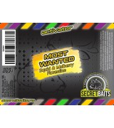 Secret Baits Most Wanted Activator